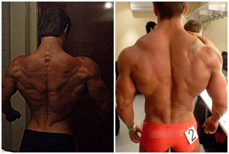 Build A Massive Back: 5 Must-Do Back Moves