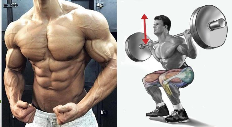 Best Pre-Exhaust Exercises for Every Muscle Group