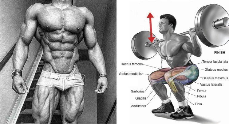 6 Best Exercises for Strength