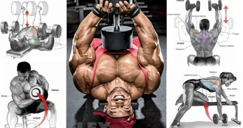 4 Day Upper/Lower Dumbbell Workout Routine